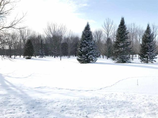 3717 Rolling Meadows Road, Hobart, WI 54155 (#50198370) :: Todd Wiese Homeselling System, Inc.