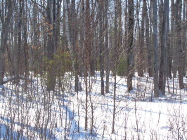 Hedgewood Court, Abrams, WI 54101 (#50198371) :: Dallaire Realty