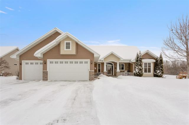 1528 Kingswood Drive, Neenah, WI 54956 (#50198454) :: Todd Wiese Homeselling System, Inc.