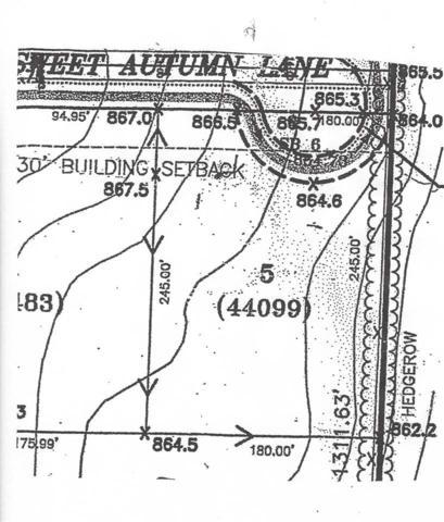 9573 Sweet Autumn Lane, Neenah, WI 54956 (#50199182) :: Todd Wiese Homeselling System, Inc.