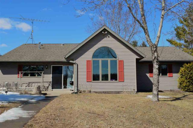 N164 Cedar Springs Circle, Neshkoro, WI 54960 (#50199291) :: Symes Realty, LLC
