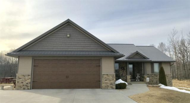 6375 Daly Creek Road, Gillett, WI 54124 (#50199751) :: Todd Wiese Homeselling System, Inc.