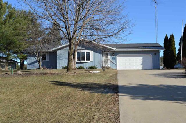 N121 E Cedar Springs Drive, Neshkoro, WI 54960 (#50199820) :: Todd Wiese Homeselling System, Inc.
