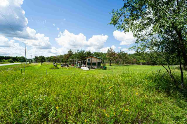 Hwy H, Wild Rose, WI 54984 (#50200084) :: Dallaire Realty
