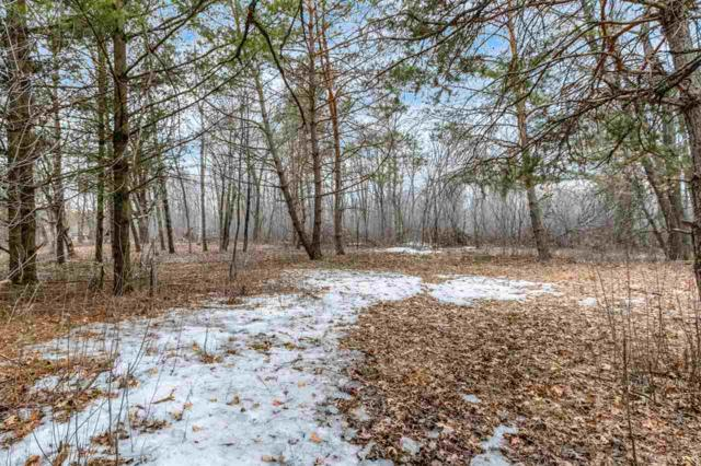 Hwy H, Wild Rose, WI 54984 (#50200084) :: Todd Wiese Homeselling System, Inc.