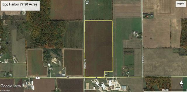 Mathey Road, Egg Harbor, WI 54209 (#50200485) :: Todd Wiese Homeselling System, Inc.