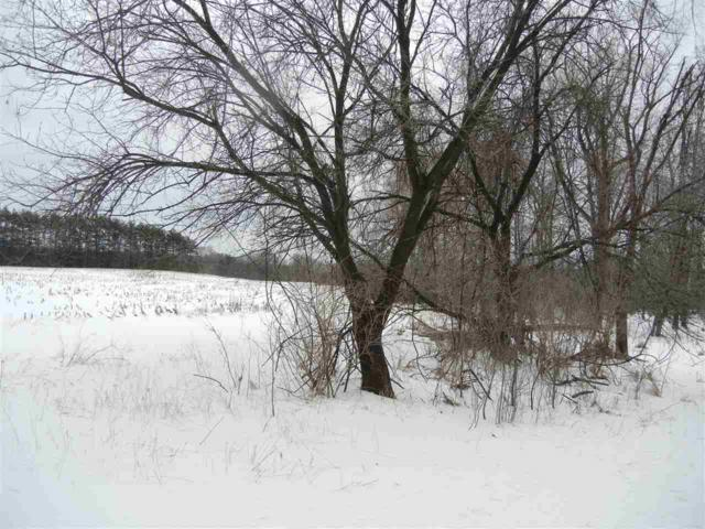 Mt Morris Road, Wild Rose, WI 54984 (#50200709) :: Dallaire Realty