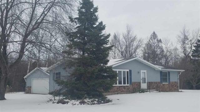 9678 Gray Lake Road, Gillett, WI 54124 (#50200787) :: Todd Wiese Homeselling System, Inc.