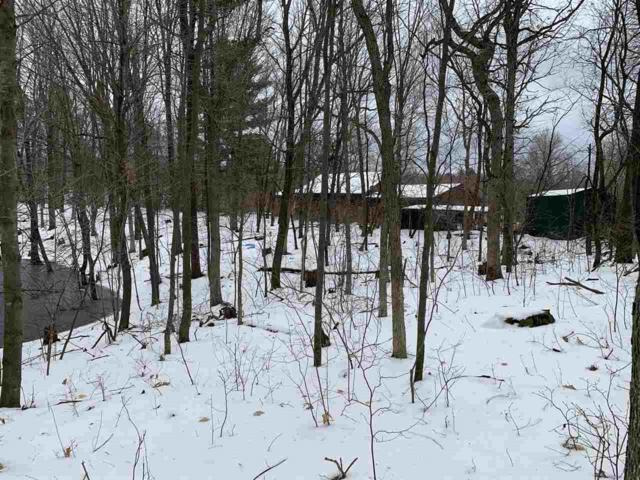 W5401 Cree Road, Wautoma, WI 54982 (#50200950) :: Dallaire Realty