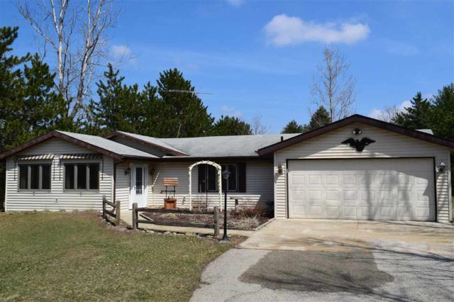 N170 E Cedar Springs Drive, Neshkoro, WI 54960 (#50200996) :: Todd Wiese Homeselling System, Inc.