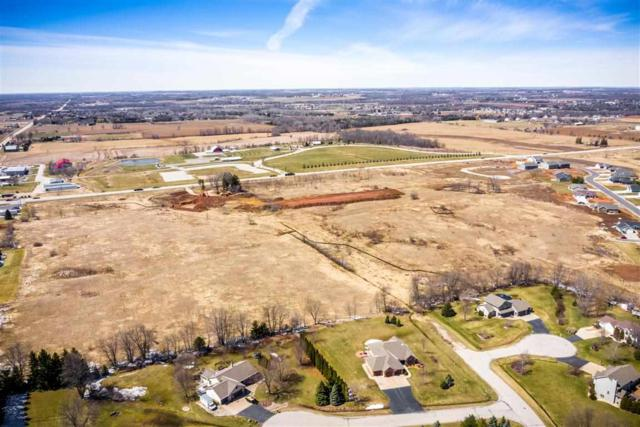 Alexandra Way, Greenville, WI 54942 (#50201009) :: Todd Wiese Homeselling System, Inc.
