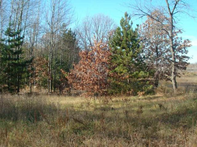 668 S Sandcrest Avenue, Wautoma, WI 54982 (#50201123) :: Symes Realty, LLC