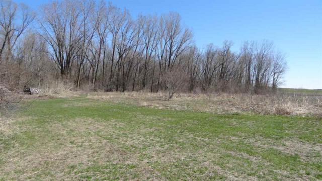 Greendale Road, Hortonville, WI 54944 (#50201345) :: Dallaire Realty