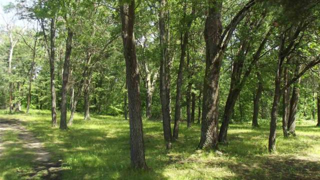 N1621 Council Hill Trail, Keshena, WI 54135 (#50201440) :: Dallaire Realty