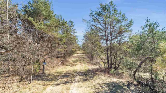 Hwy P, Wild Rose, WI 54984 (#50201579) :: Dallaire Realty