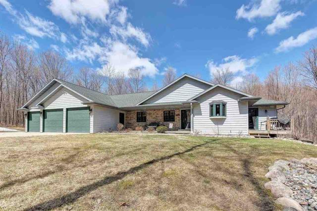 N9684 Connors Drive, Wabeno, WI 54566 (#50201899) :: Dallaire Realty