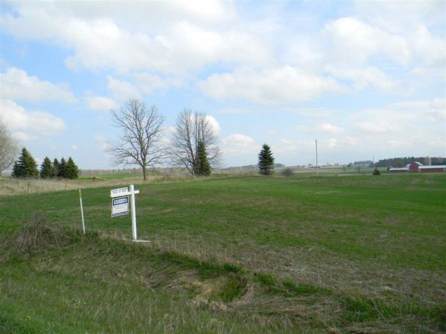 Park Road, Greenleaf, WI 54126 (#50202059) :: Todd Wiese Homeselling System, Inc.