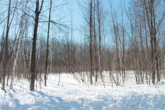 Pioneer Drive, Abrams, WI 54101 (#50202236) :: Dallaire Realty