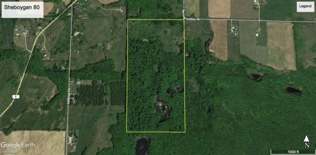 Spring Valley Drive, Glenbeulah, WI 53023 (#50202333) :: Dallaire Realty