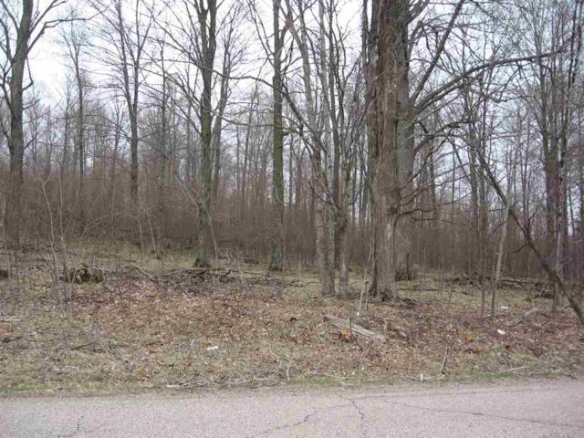 Robin Road, Wittenberg, WI 54499 (#50202522) :: Dallaire Realty