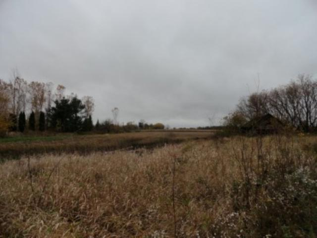 Hwy 29, Pulaski, WI 54162 (#50202698) :: Todd Wiese Homeselling System, Inc.
