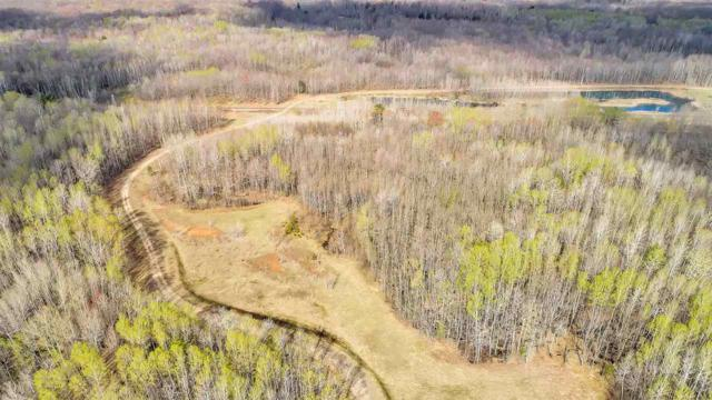 Hwy 141, Abrams, WI 54101 (#50203003) :: Dallaire Realty
