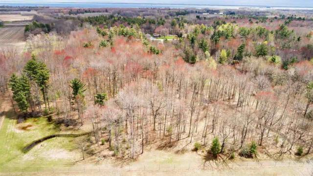 Timber Trail, Suamico, WI 54173 (#50203055) :: Symes Realty, LLC