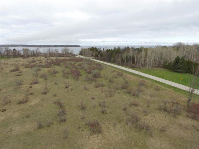 Stevenson Pier Road, Sturgeon Bay, WI 54235 (#50203127) :: Dallaire Realty