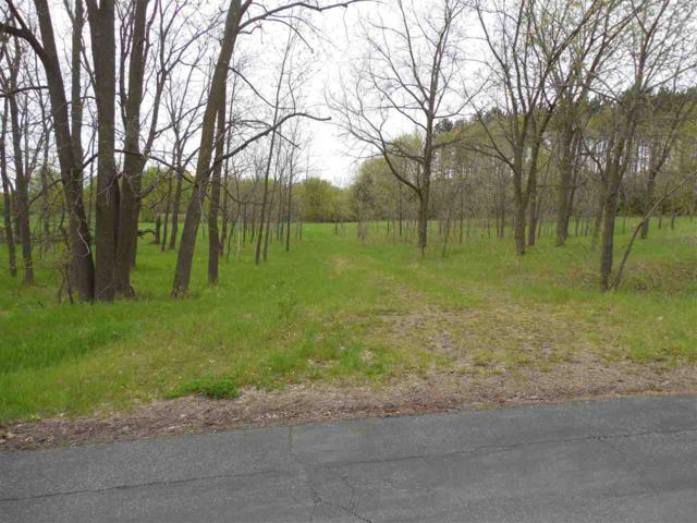 Kelly Drive, Hortonville, WI 54944 (#50203275) :: Dallaire Realty