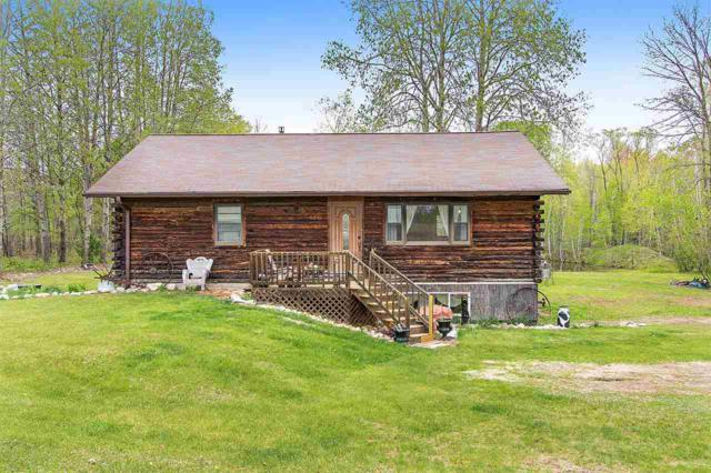 5890 Lade Beach Road, Little Suamico, WI 54141 (#50203614) :: Symes Realty, LLC