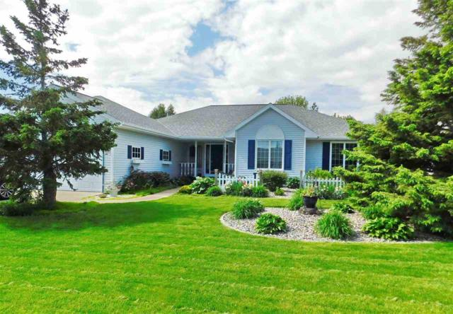 1956 Swan Pointe Terrace, De Pere, WI 54115 (#50203779) :: Todd Wiese Homeselling System, Inc.