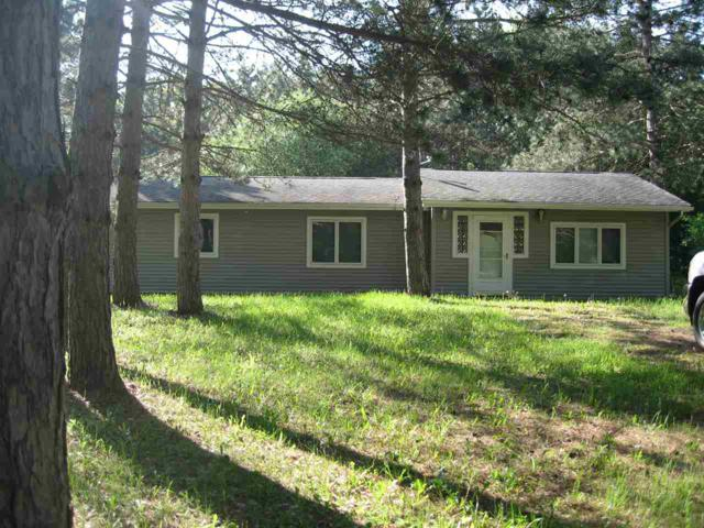 N2153 Alpine Drive, Wautoma, WI 54982 (#50204171) :: Todd Wiese Homeselling System, Inc.