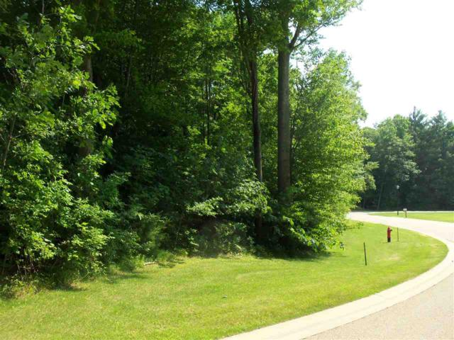 Whitnee Way, Bonduel, WI 54107 (#50204176) :: Todd Wiese Homeselling System, Inc.