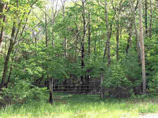 Wood Lane, Suamico, WI 54173 (#50204845) :: Dallaire Realty