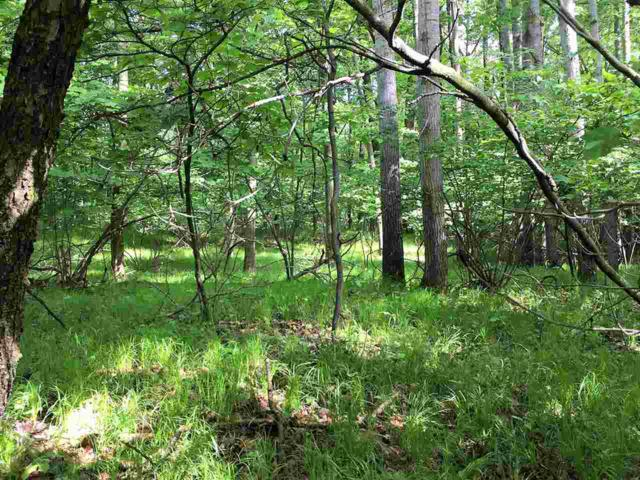 Wood Lane, Suamico, WI 54173 (#50204846) :: Dallaire Realty