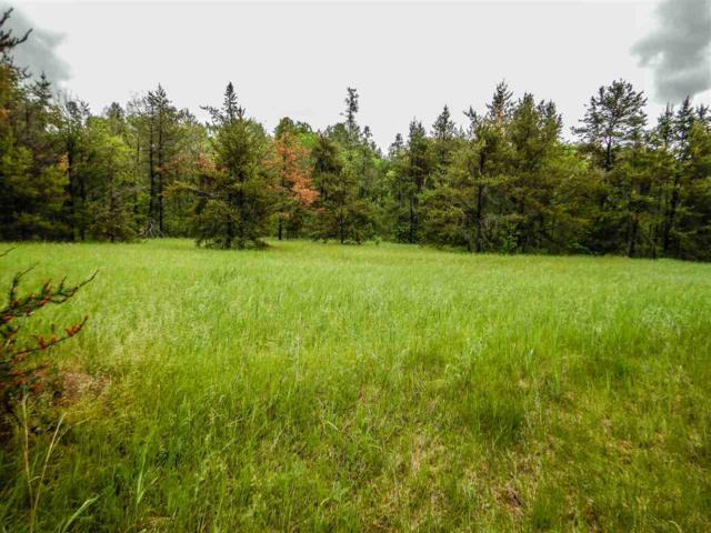 Silver Creek Road, Crivitz, WI 54114 (#50204863) :: Todd Wiese Homeselling System, Inc.