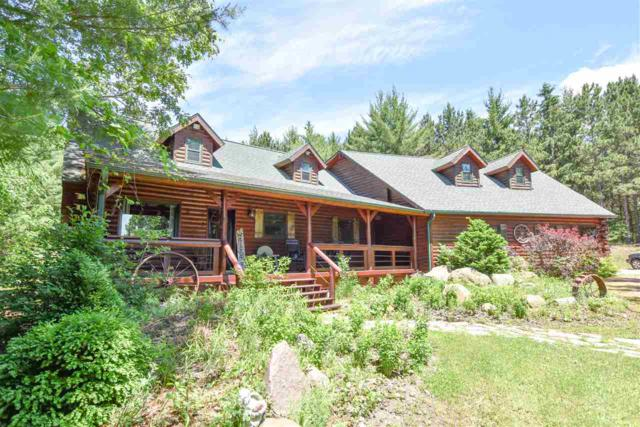 W6796 Badger Court, Wild Rose, WI 54984 (#50204883) :: Dallaire Realty