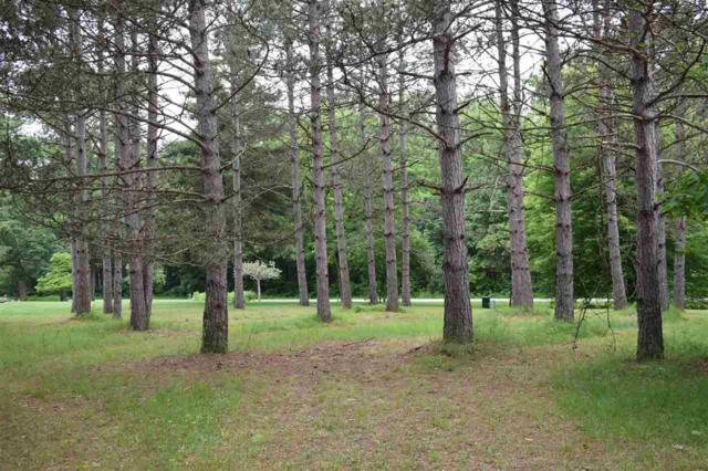 Hidden Springs Drive, Neshkoro, WI 54960 (#50205125) :: Dallaire Realty