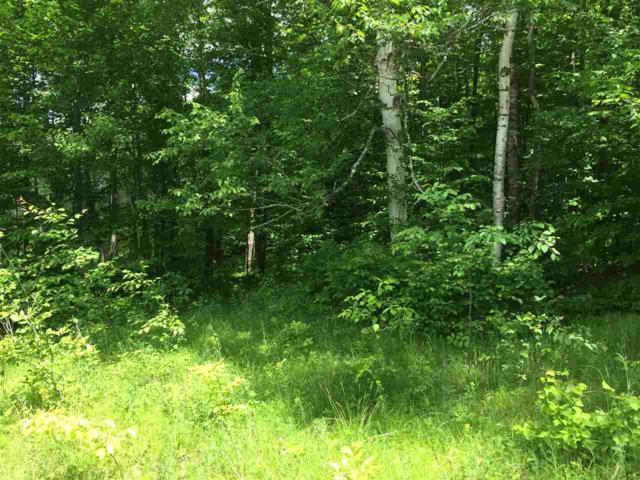 W16200 Klug Lane, Athelstane, WI 54104 (#50205261) :: Symes Realty, LLC
