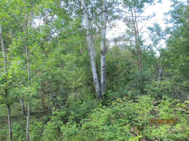Akron Drive, Almond, WI 54909 (#50205338) :: Dallaire Realty