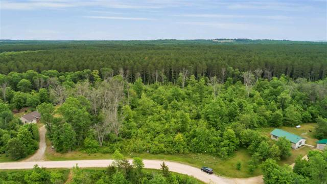 Walleye Run, Crivitz, WI 54114 (#50206000) :: Dallaire Realty