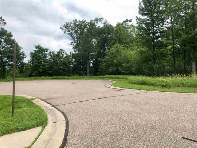 Hart Drive, Waupaca, WI 54981 (#50206029) :: Dallaire Realty