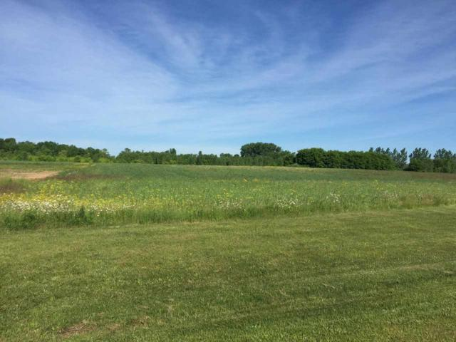 D B Frontage Road, Lena, WI 54139 (#50206125) :: Carolyn Stark Real Estate Team