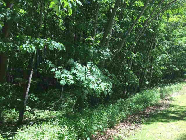 Birchwood Circle, Luxemburg, WI 54217 (#50206243) :: Symes Realty, LLC