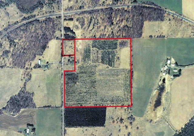 Fatla Road, Armstrong Creek, WI 54103 (#50206262) :: Symes Realty, LLC