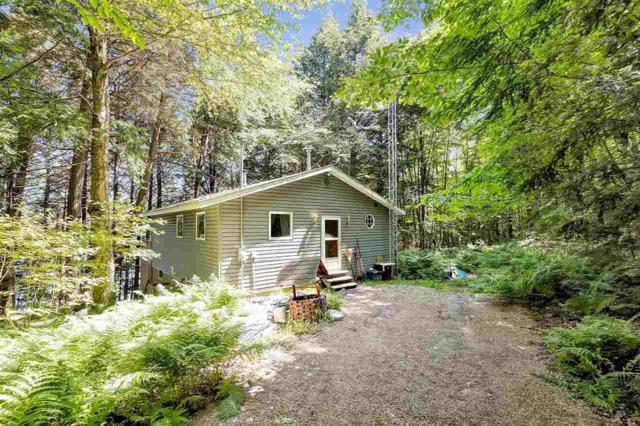 N9409 Connors Drive, Wabeno, WI 54566 (#50206404) :: Symes Realty, LLC