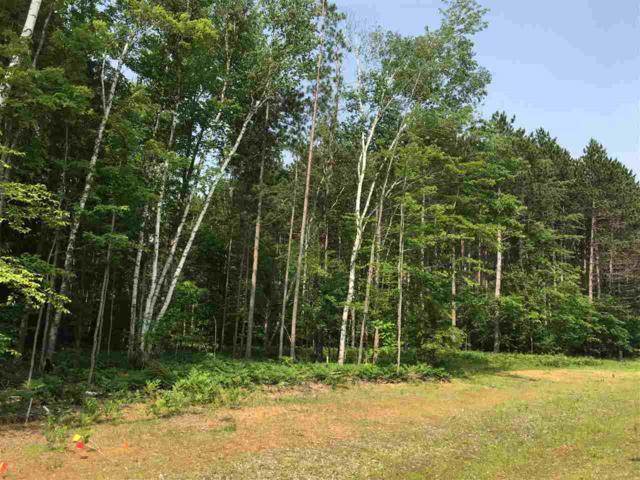 Autumn Blaze Trail, Sobieski, WI 54171 (#50206654) :: Symes Realty, LLC
