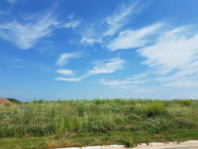 Meadow Park Drive, Greenville, WI 54942 (#50206865) :: Todd Wiese Homeselling System, Inc.