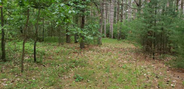Shadow Road, Waupaca, WI 54981 (#50207120) :: Symes Realty, LLC