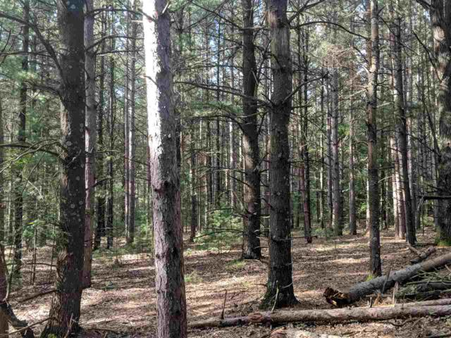 Hwy Ee, Redgranite, WI 54970 (#50207245) :: Dallaire Realty